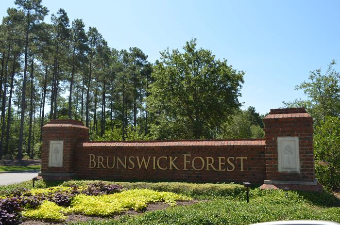 Brunswick Forest real estate